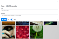 Editing image metadata in tile-view