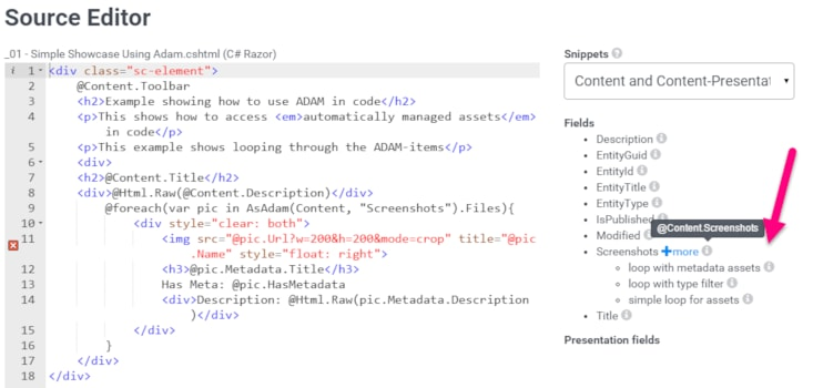 2sxc 8.1 With Instant Design, Develop and Sherlock Code-Snippets